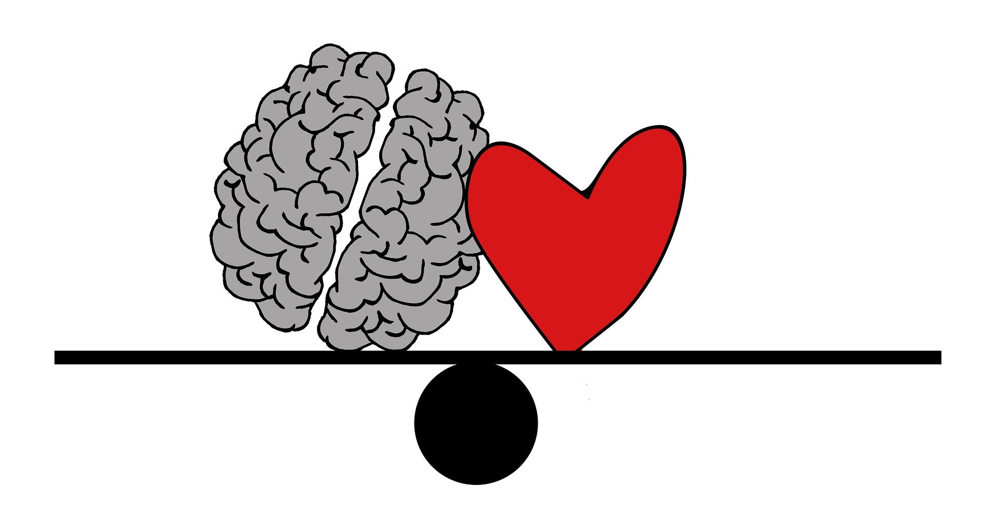 Hjerte og hjerne